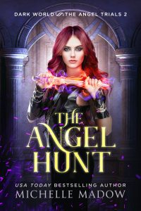 The Angel Hunt - eBook