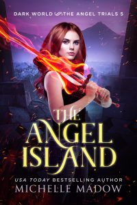 The Angel Island Book 5 - eBook
