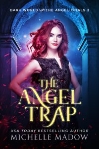 The Angel Trap - eBook small